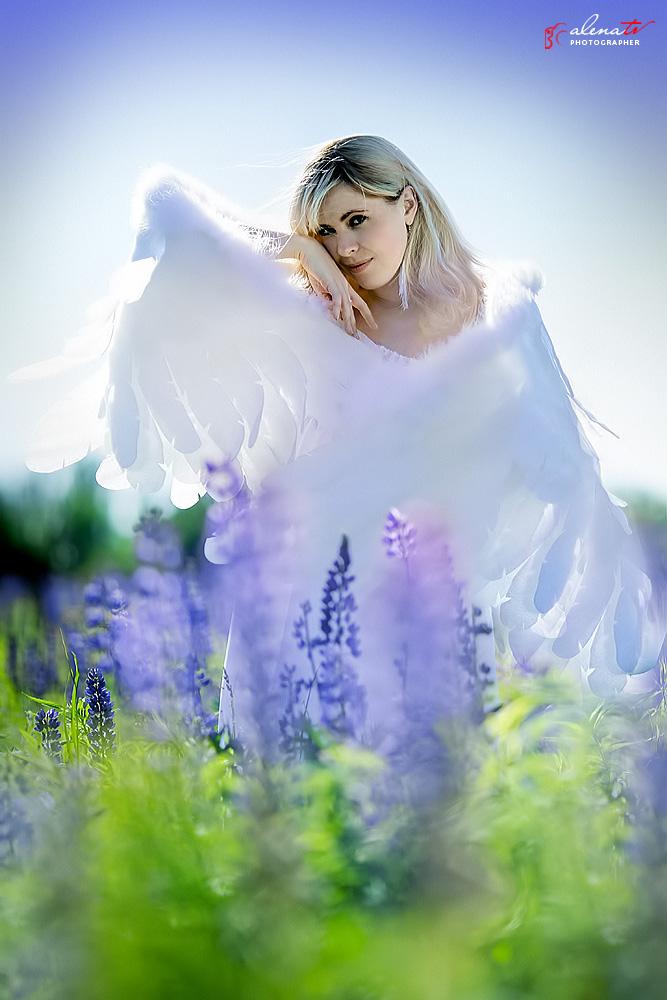 фотосессия девушки с крыльями