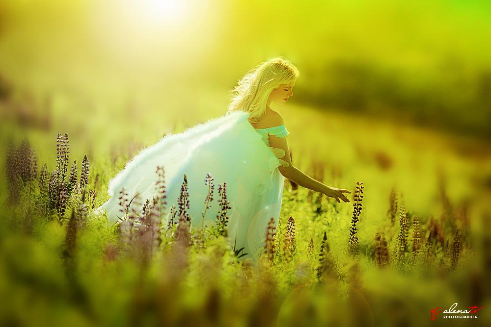фото девушки с крыльями в поле