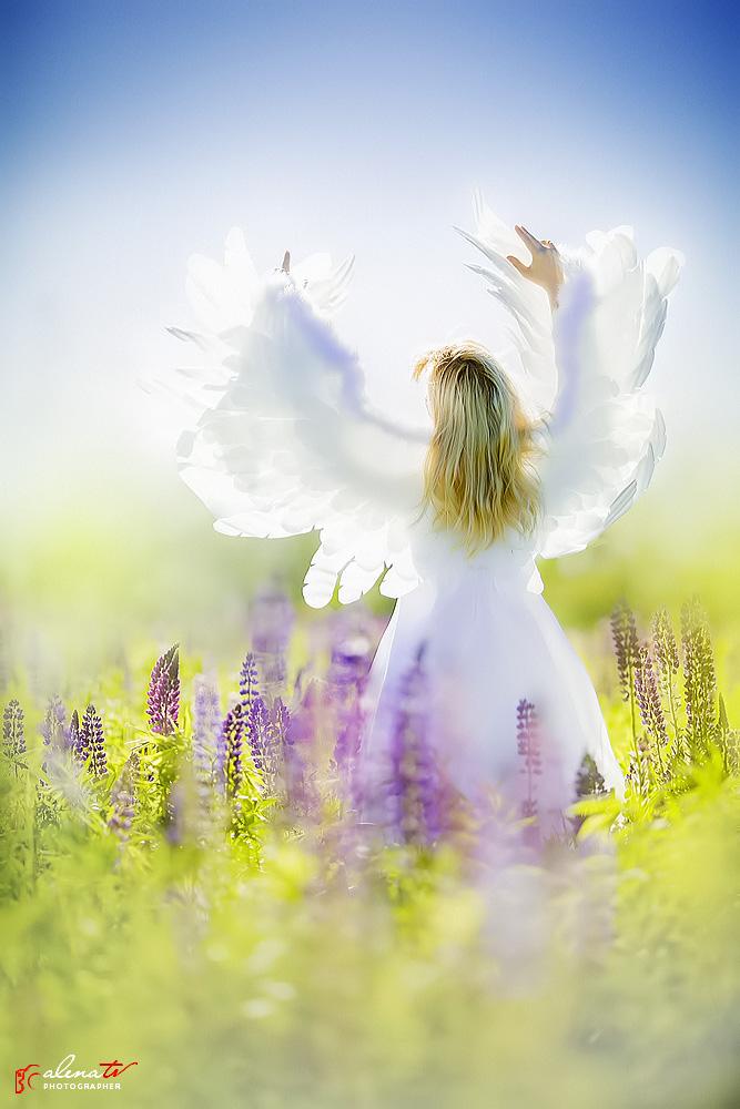 фотопроект ангел