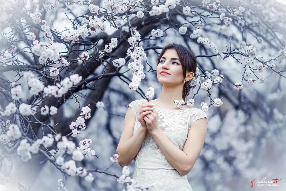 фотосессия в цветущих деревьях абрикосах